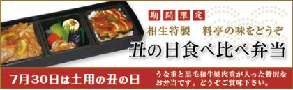 16-ushi2