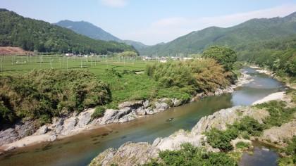 飯南茶畑と櫛田川