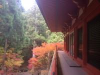 5横川中堂