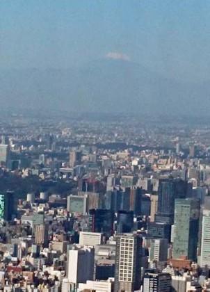 スカイツリー(富士)