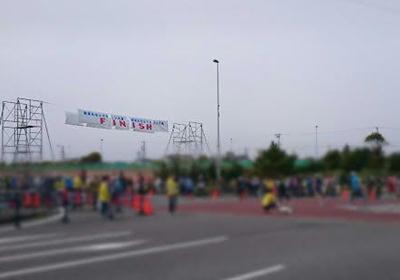 16焼津マラソンゴール前