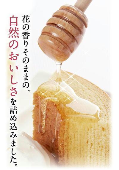 山田養蜂場バウムイメージ