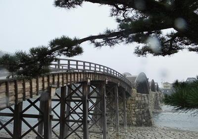 広島錦帯橋松と