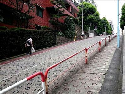 170822江戸川公園目白台25のぞき坂下