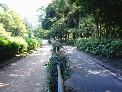 170921名城ラン名城公園4