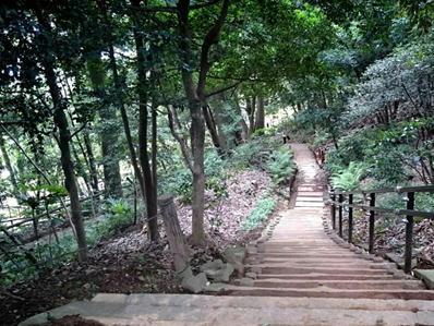 170822江戸川公園目白台16肥後細川公園高低差