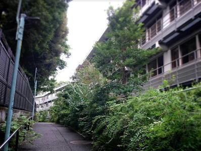 170822江戸川公園目白台19おばけ坂和敬塾