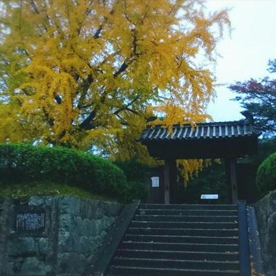 171114松坂城紅葉④