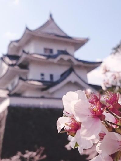 180403伊賀上野城アイコン