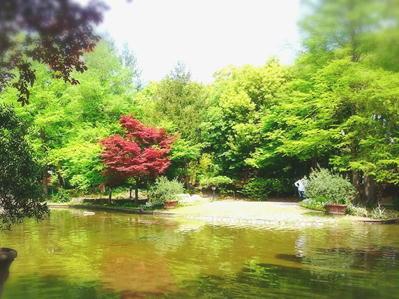 180423フラリエ池