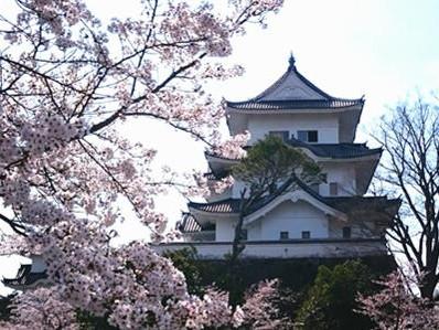 180403伊賀上野城天守東側面