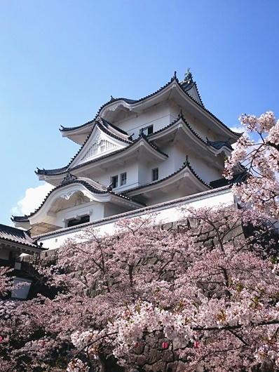 180403伊賀上野城天守下から