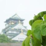 大坂城イメージ
