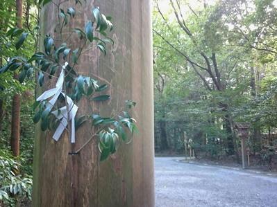 19初詣伊勢神宮榊