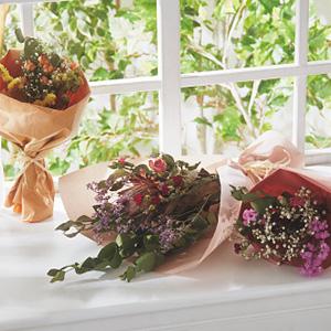 20母の日カーネーション花束