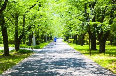 ランニング林