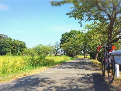 20自転車通勤