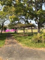 【雰囲気に良い公園】