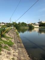 【大谷池の堤防】