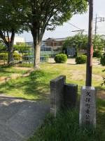 【大きめの公園】