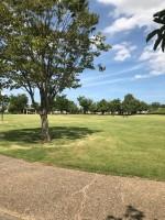 【上川遊歩道公園の広々した芝生広場】