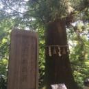 714高尾山18